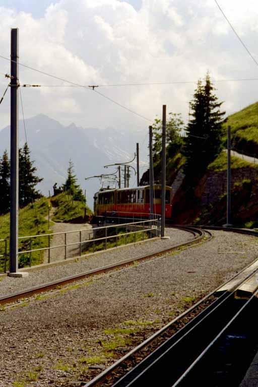 Einfahrt-Schynige-Platte1